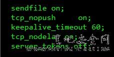 彻底隐藏Nginx版本号的安全性与方法